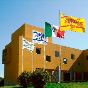 Dirección General HomCare de México